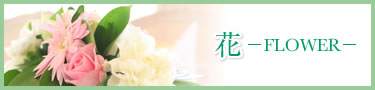 花—FLOWER—