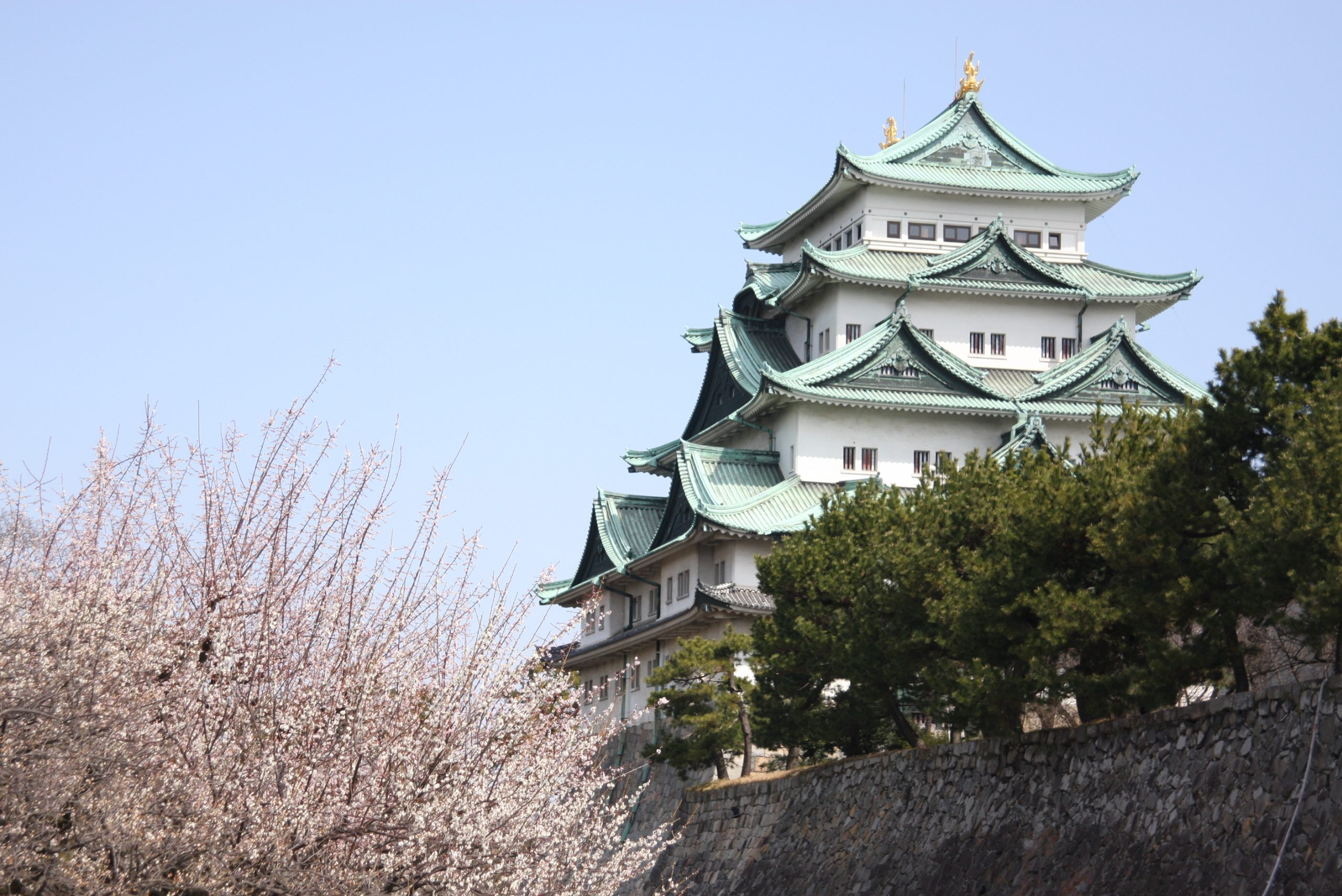 春先、3月の名古屋城